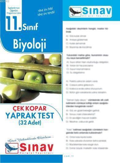 SINAV 11.SINIF BİYOLOJİ YAPRAK TEST
